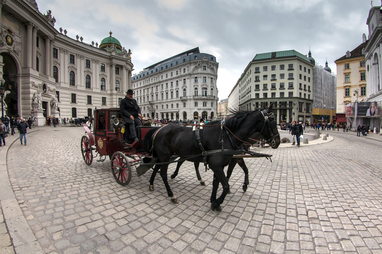 Experience Vienna in a Horse Drawn Carriage